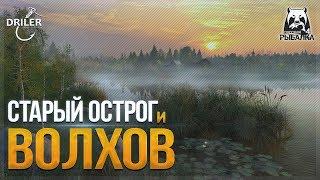 Рыбачим на Старом остроге и Волхове. Стрим Русская рыбалка 4