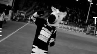 R. Charleroi S.C. - Club Brugge KV : 14/10/2016