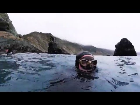 BIG SUR Freediving