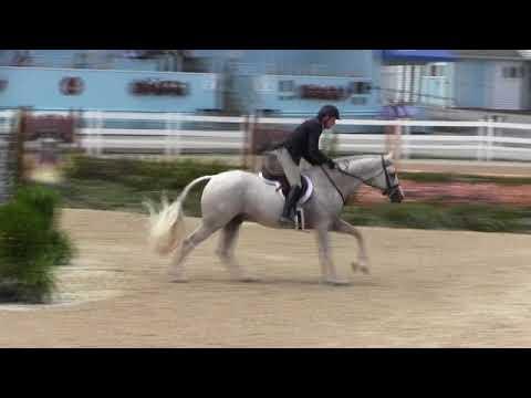 Video of SANDSTONE ridden by SCOTT STEWART from Net!