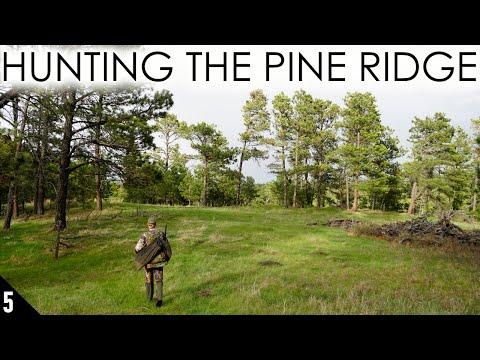 Hunting The Pine Ridge | Nebraska Merriam's Turkey Hunting 2020
