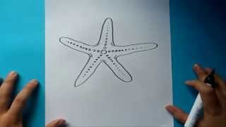 Como dibujar una estrella de mar paso a paso | How to draw a starfish
