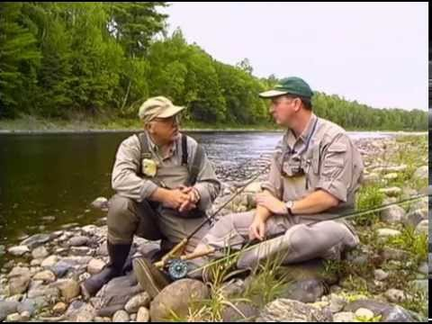 Miramichi Atlantic Salmon | New Brunswick