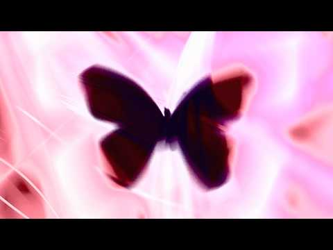 Bassnectar feat. Mimi Page - Butterfly Lyrics | Musixmatch