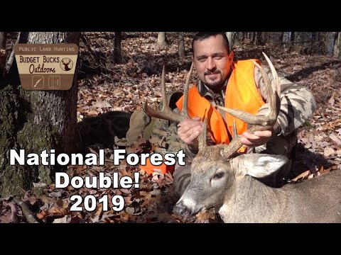 Two National Forest Bucks In Virginia - 2019!