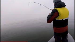 С таким Окунем и Судак не нужен Рыбалка на спиннинг весна 2020