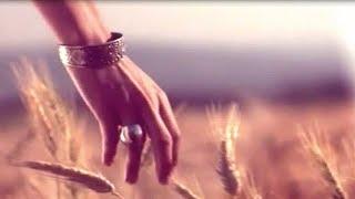 Gary B. -  Serendipity  *k~kat chill café* Vloppers Bride