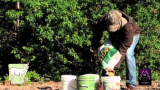 How To Plant Spring Food Plots : The Huntin Grounds Management : Eagle Seed Soybeans