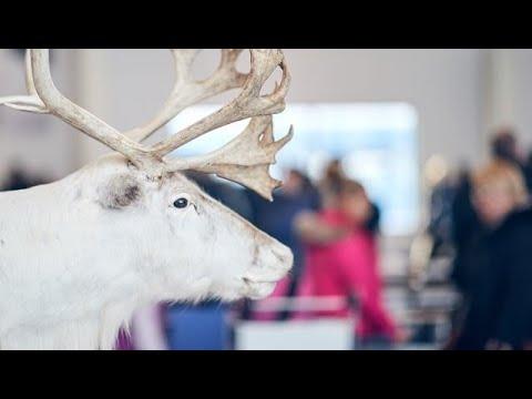 Winter wonderland: Landing to Finnish Lapland | Finavia