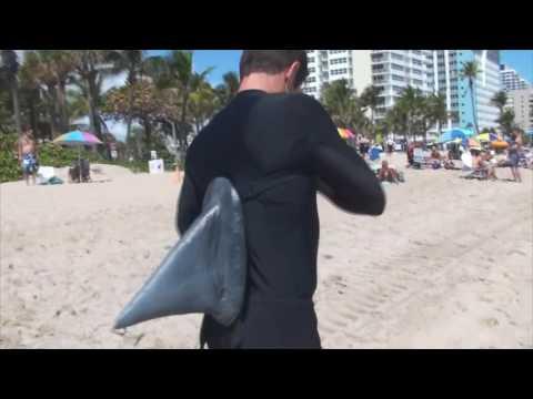Пранк.Нападение акулы. Попытка избить акулу :D