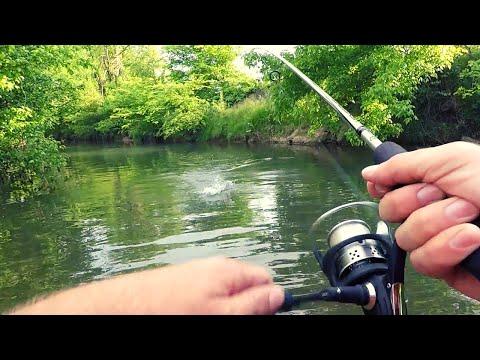 Relaxing Creek Wading Fishing