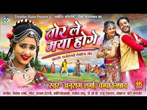 Tor Le Maya Hoge II तोर ले मया होगे  II Anurag Sharma, Champa Nishad