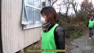 Les animaux abandonnés de Fukushima qu'on laisse mourir