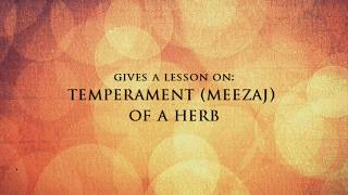 Ibn Sina Herbal -  Extract from lesson on Meezaj of Herbs (Sh.Atabek)