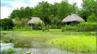 Miami, Florida Everglades - Gator Park Airboat Tours.  June 2012