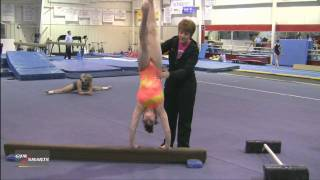 Great Handstands - Mary Lee Tracy