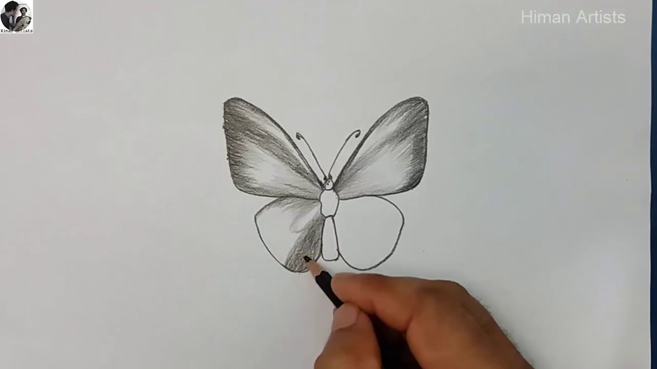 Sketch Butterfly Draw A Butterfly Youtube