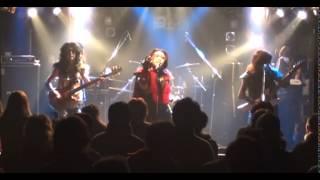アニメタルUSAのカバーバンド「アニメタルG」の演奏によるペガサス幻想.