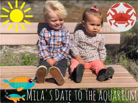 THE LIVING COAST DISCOVERY CENTER | Mila goes on a date!