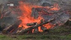 Thayngen SH / Thalheim an der Thur ZH: Waldbrände fordern Feuerwehr