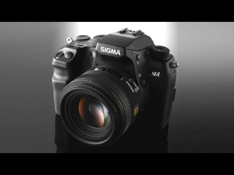My thoughts on Sigma DSLRs
