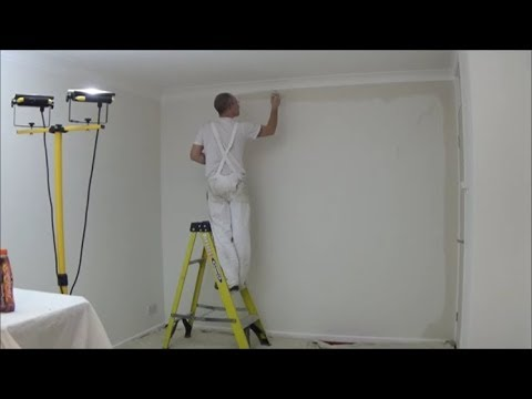 Lounge Part 3 Painting ceiling and walls