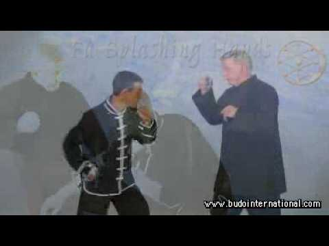 Kung Fu Splashing Hands. James McNeil