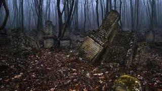 Страшный лес 3 Видео коп