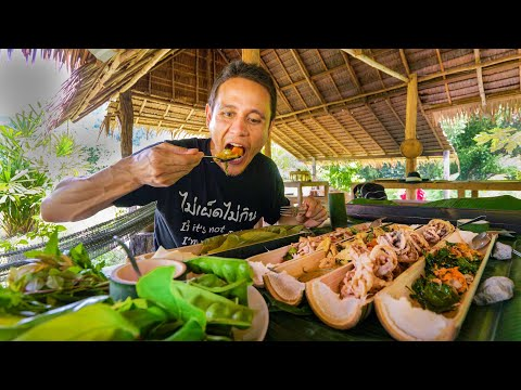 Backyard Food Paradise!! Farm to Table THAI FOOD in the Rainforest!!   Khao Sok, Thailand