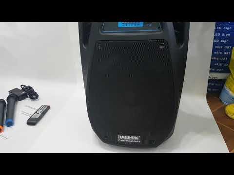 Переносная акустика с радиомикрофонами SL10-02 / 100W(USB/Bluetooth/Аккумулятор)