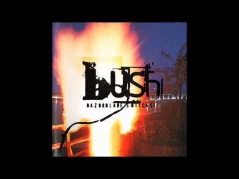 Bush - Cold Contagious