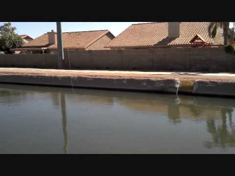 Fly Fishing for Carp on Arizona Canals.