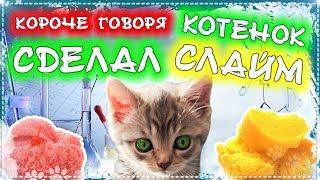 КОРОЧЕ ГОВОРЯ, КОТЕНОК СДЕЛАЛ СЛАЙМ \ Бездомный котенок Лайки слаймер и сделал лизун