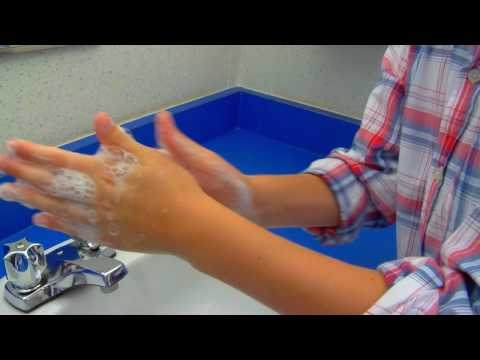 Hand Hygiene: The Dirt on Germs