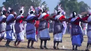 karma dance || 48 village  ||  हाए रे सरगुजा नाचे || HD song video 2018
