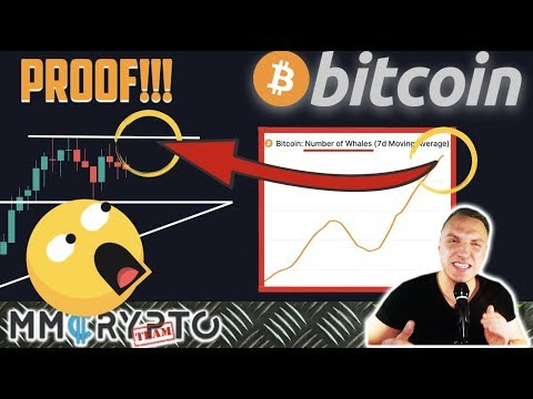PROOF: BITCOIN WHALES ARE RIGHT NOW BUYING!!! MOST CRUCIAL LEVEL FOR BTC AHEAD!!!