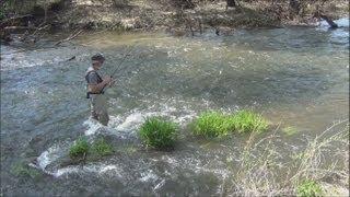 Рыбалка. Ловля голавля на майского жука. Река Дон.