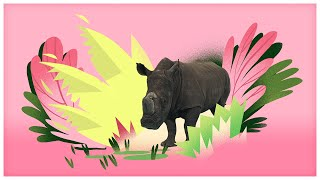 animal songs he s a rhino by storybots
