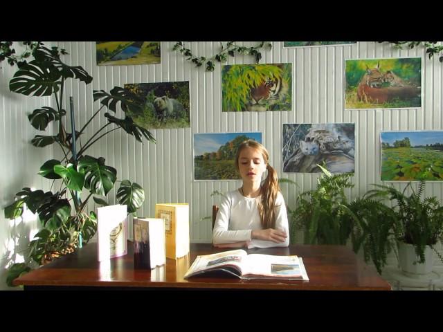 Изображение предпросмотра прочтения – ВалерияСоветникова читает произведение «В небе тают облака» Ф.И.Тютчева