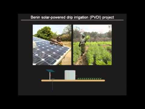Solar Market Gardens, Dr. Rosamond Naylor 1/2