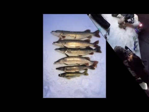 Slave Lake Icefishing