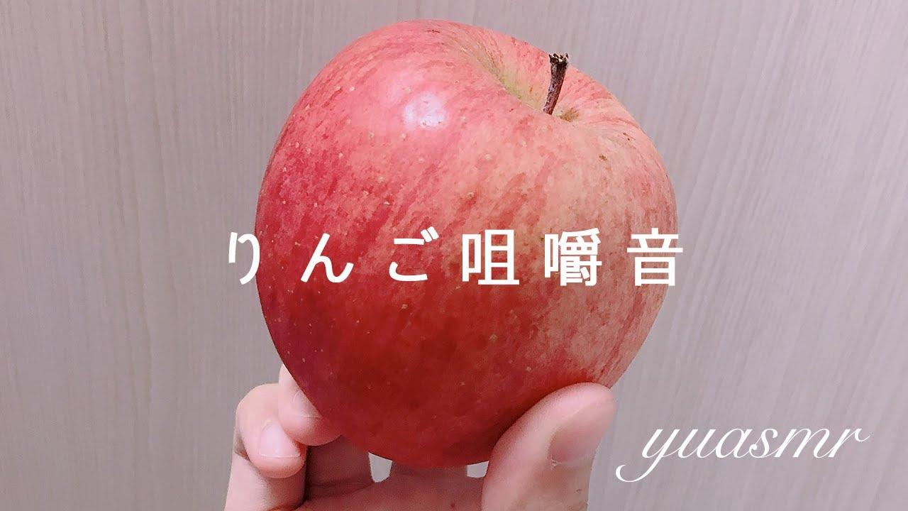 【咀嚼音】りんご食べる音(丸かじり(๑'ڡ'๑))【需要ありますか🙃?】