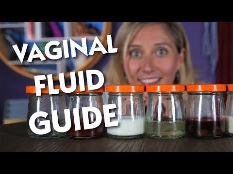 Vaginal Fluid Handbook