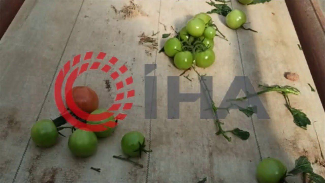 Fırtına Kahta'daki seraları vurdu