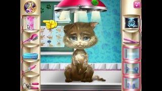 играєм в игри онлайн лечение кошки и видео режисер