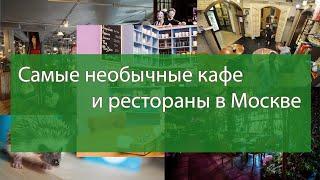 Самые необычные кафе и рестораны в Москве