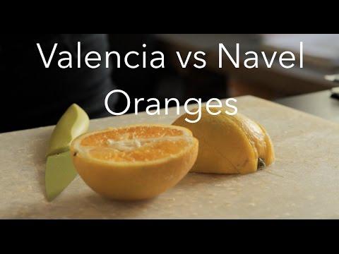 Valencia Oranges Vs Navel Oranges - The FruitGuys