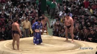2017大相撲大阪春場所での鶴竜 vs 蒼国来の取組。