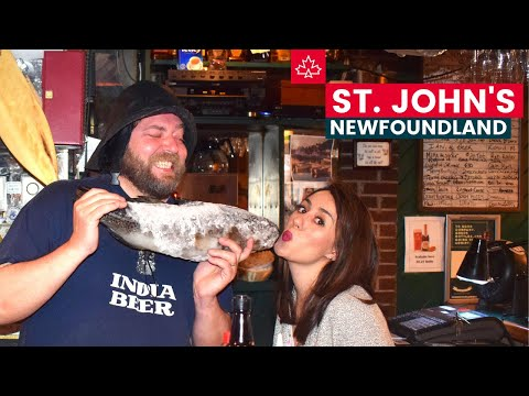 Best Things To Do in St. John's Newfoundland!