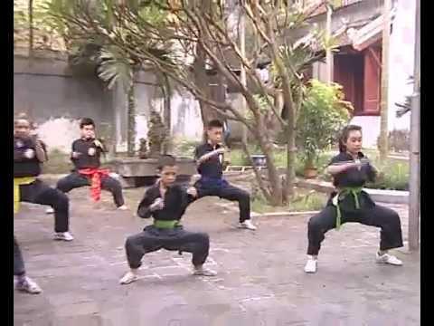 Tinh hoa võ thuật - Môn phái Nam Hồng Sơn - Võ sư Nguyễn Tỵ.avi